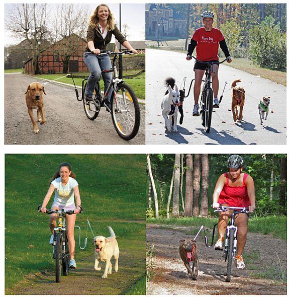 Bolsa Para Levar Cachorro Na Bicicleta : Eu vou de bike bicicletas lazer e transporte urbano ? dicas